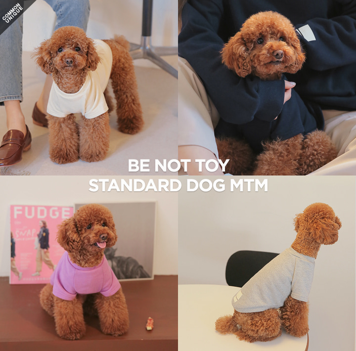 [BE NOT TOY] STANDARD DOG MTM
